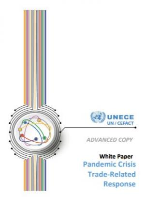 Cover of the report White Paper pandemic